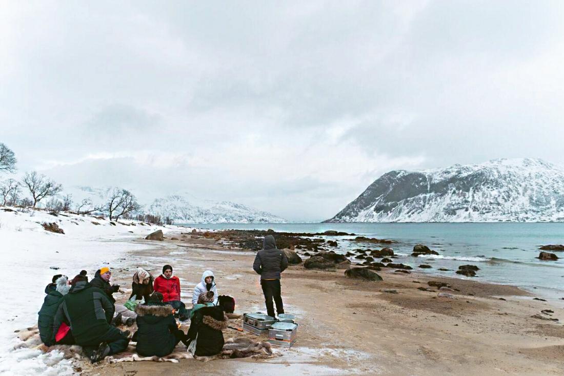 hazalishere_wordpress_tromso_grotfjorden_camping.jpg